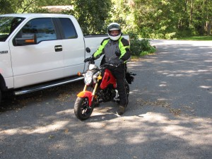 Dendog on the Grom